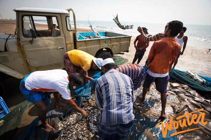 Wouter Kingma Blog for Toyota Fujeirah fishing post 06